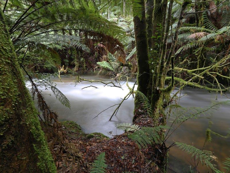 Tyenna River Tasmania